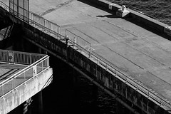 7D-6739 (msantosviola) Tags: blackandwhite bw bnw photography seattle washington state dock conceptual