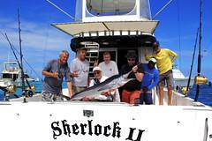 sherlock_best_photo (Big Marlin Charters) Tags: fishing charter punta cana
