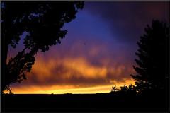 Spring Creek Mesa, Montrose, Colorado (Chuckcars) Tags: usa colorado montrose sky weather fujifilm xpro2 fujinon23mmf2wr nature landscape sunset color summer springcreek fujinon23mm blue red orange yellow clouds tree cloud