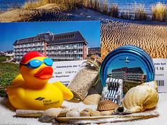 FlickrFriday #Erinnerungsstücke an meine Sylt-Aufenthalte (J.Weyerhäuser) Tags: muscheln erinnerungsstücke sylt flickrfriday gästekarte memorabilia hotel strandkorb meer promenade westerland