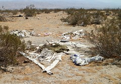 September 02, 2018 (44) (gaymay) Tags: trash california desert gay love palmsprings riversidecounty coachellavalley sonorandesert geocaching