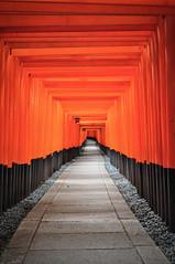 Fushimi Inari Taisha ,Kyoto 伏見稻荷大社之千本鳥居@京都 (Vincent_Ting) Tags: fushimiinaritaisha kyoto 伏見稻荷大社 千本鳥居