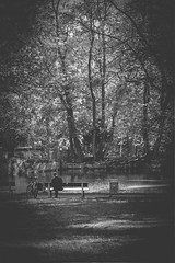 Image0000034 (peter3400) Tags: agfa apx 100 analog ishootfilm germany goettingen bw blackwhite blackandwhite minolta minolta4ever manual monochrome md x1 35mm