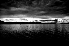 000613 (la_imagen) Tags: sw bw blackandwhite siyahbeyaz monochrome lindau lindauimbodensee bodensee laimagen lakeconstanze lagodiconstanza lagodeconstanza sky dramatic alps alpen alplar