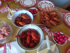 Crayfish party (Explored) (skumroffe) Tags: crayfishparty crawfishparty kräftskiva bromma stockholm sweden fest party crayfish crawfish skaldjur kräftor explore explored shrimps räkor