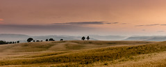 Land is that place, they talk 'bout living free! (Beppe Rijs) Tags: 2018 italien juli sommer toskana italy july summer tuscany