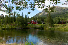 Hemsedal - Norway (Melvin Debono) Tags: hemsedal is municipality its own gol become was separated from bergen 1987 buskerud county norway it part traditional region hallingdal lies norwegian national road 52 rv located 220 km 13670 mi northwest oslo 273 16963 melvin debono canon 7d photography travel tree small hemsil river fylke sky wood grass