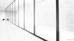The great white (frankdorgathen) Tags: alpha6000 sony sony18200mm perspektive perspective kunst art ruhrpott ruhrgebiet rüttenscheid essen architektur architecture gebäude building weis white folkwang museum minimalism minimalistic
