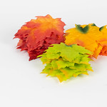 Autumn colorful orange, red and green maple leaves thumbnail