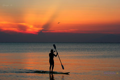 Silhouette of surf man standing with a paddle on the surfboard at sunset. (George @) Tags: κουπί σανίδα σερφ ηλιοβασίλεμα surfman man surfboard sunset paddle silhouette surfing watersport swim surf wave sea sunsetview redsun redsky skycolours redpassion sunsetpassion sunsetfever magicsky lovesunset seaview endlesssea visitgreece seaside seascape seapicture amazingview dreambeach seacoast seaphotography beach george papaki eyes photography photografer georgeeyesphotography georgeeyes georgepapaki photografia φωτογραφία greekphotographers europeanphotography naturephotography landscapephotography 0nlygreece macedoniagreece makedonia macedoniatimeless macedonian macédoine mazedonien μακεδονια македонијамакедонскимакедонци