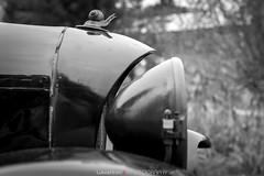 Automobilové klenoty (Lukas Hron Photography) Tags: automobilové klenoty golf hostivař golfové hřiště výstava automobil motocykl první republika veterán hstorie škoda skoda tatra jawa laurinklement wikov bugatti čz praga
