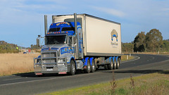 Hume/Olympic Mix (1/10) (Jungle Jack Movements (ferroequinologist)) Tags: daf kenworth international hume highway olympic way ettamogah albury hackett transport warragul coregas ats australian touring services jack daniels monahahn logistics mildura milperra bonaccord qualirty bairnsdale horsepower big rig haul haulage freight cabover trucker drive carry delivery bulk lorry hgv wagon road nose semi trailer cargo vehicle freighter ship move power teamster truck tractor prime mover diesel driver cab cabin loud beast wheel double b iveco bobbins pambula black trans mcgrorys grice bowens