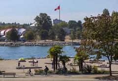 Oh Canada (Clayton Perry Photoworks) Tags: vancouver bc canada summer downtown city explorebc explorecanada sunsetbeach beach palmtrees bike bicycle