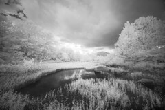Gathering Storm (DRCPhoto) Tags: irconverteddslr canon5d digitalinfrared digitalir sigma1224mmdghsm cheatriver westvirginia