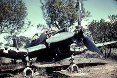 Ju 87 Regia Aeronautica JEC 00826 (ww2color.com) Tags: junkers ju87 stuka regiaaeronautica