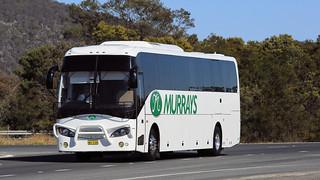 Bus Omnibus (3/3)