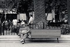 CCH-11919 (Claudio Chavez) Tags: canon70d 70d eos70d canonphoto photographer photography photo canon cchfotografias 50mm18ii canon50mm18ii canon50mm18 fotocallejera fotografiacallejera callejera fotourbana fotografiaurbana urbana fotoperiodismo photojournalism photodocumentary documentaryphoto streetphotography photojournalist documentary fotografiadocumental streetphotographers documentaryphotography streetportrait urbanphotograph urbanphotography