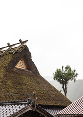 Thatched roofed house in a traditional village, Kyoto Prefecture, Miyama, Japan (Eric Lafforgue) Tags: agriculture architecture asia buildingexterior builtstructure colorimage copyspace countryside day farm house japan japan18145 japaneseculture kitakuwadadistrict kyotoprefecture miyama nopeople outdoors photography protection roof ruralscene summer thatchedroof tradition tranquility traveldestinations tree vertical village jp