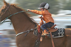Dash for Cash (cowgirlrightup) Tags: cash littlecowboy 5yearsold borninthesaddle raisingdust peeweebarrelracer cowgirlrightup rodeo familysport alberta canada
