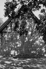 Kommern (25/8) Tags: minolta x700 rokkor 50mm fujifilm neopan acros ilfotecddx ilfotec