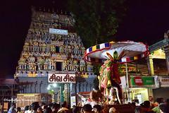 Lord Vigneshwara (Kapaliadiyar) Tags: kapaliadiyar mylaporetemple myilai ganapathy ganeshachaturthi ganesha