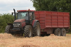 Case IH MXM 120 Pro Tractor with a Thorpe Grain Trailer (Shane Casey CK25) Tags: case ih mxm 120 pro tractor thorpe grain trailer cnh castletownroche casenewholland red traktor traktori tracteur trekker trator ciągnik harvest grain2018 grain18 harvest2018 harvest18 corn2018 corn crop tillage crops cereal cereals golden straw dust chaff county cork ireland irish farm farmer farming agri agriculture contractor field ground soil earth work working horse power horsepower hp pull pulling cut cutting knife blade blades machine machinery collect collecting nikon d7200