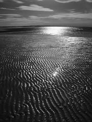Shiny (Badly Drawn Dad) Tags: geo:lat=5298412480 geo:lon=083467200 geotagged beach coast hoyar72 infrared ir norfolk unitedkingdom wellsnextthesea gbr
