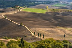 *Campi della Val d'Orcia* (Albert Wirtz @ Landscape and Nature Photography) Tags: albertwirtz toskana tuscany toscana pienza valdorcia paesaggi paysage campagna campagne campo fieldsoftuscany campi campidellavaldorcia italia italien italy rural ländlich nikon d700 podereterrapille cipressi zypressen unescoworldheritage unescoworldheritagesite unesco paisaje nature natur albertwirtzphotography albertwirtzlandschaftsundnaturfotografie albertwirtzlandscapeandnaturephotography feldweg gladiator viagladiatore unpavedroad piste roughroad tree forest russelcrowe thegladiator movieset breathtakinglandscapes diamondclassphotographer