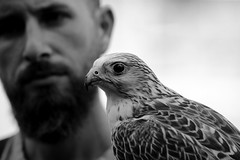 Confidenza (carlo612001) Tags: blackandwhite falconry biancoenero falconeria falco hawk friends man faces bokeh face