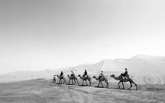 On camel's back. (paulcore8118) Tags: desert camel silk road china dunhuang sand dunes
