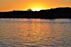 Orange glow (thomasgorman1) Tags: nikon outdoors sun sundown view scenic desert trees orange glow az colorado arizona