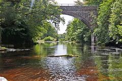 The river Isla (eric robb niven) Tags: ericrobbniven scotland dundee perthshire angus river isla cyclist cycling