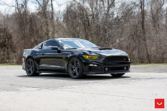 Ford Mustang GT - Hybrid Forged - HF-1 - © Vossen Wheels 2018 -1010 (VossenWheels) Tags: ford fordaftermarketwheels fordgt fordgtaftermarketwheels fordgtwheels fordmustang fordmustanggt fordmustanggtaftermarketwheels fordmustanggtwheels fordmustangwheels fordwheels gt gtaftermarketwheels gtwheels hf hf1 hybridforged hybridforgedhf1 mustang mustangaftermarketwheels mustanggt mustanggtaftermarketwheels mustangwheels mustanhgtwheels mustng vossen vossenwheels fordmustangaftermarketwheels ©vossenwheels2018