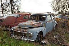 544 (mariburg) Tags: rotten marode ruin decay desolate cars rustycars auto canoneos6d sigma35mm14dghsmart volvo