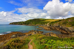 Palace Cove (Dave Snowdon (Wipeout Dave)) Tags: davidsnowdonphotography canoneos80d cornwall palacecove landscape coast southwestcoastpath