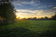 Orange over Green (Geert E) Tags: retie sunset zonsondergang weide hdr pasture wiese