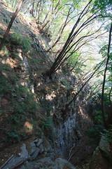 Sopra la Forra (Roveclimb) Tags: mountain montagna alps alpi prealpi escursionsmo hiking laglio poncionedilaglio colmegnone germanello forest foresta wood albero bosco canyon forra valledelponte montidinar montiditicè montiditicee