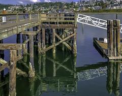 Lumber reflections (Tony Tomlin) Tags: whiterockbc britishcolumbia canada pier whiterockpier pigeons