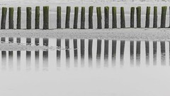 Beach Reflections (grohacke_hd) Tags: mirrored strand ocean northsealovers niederlande netherlands küste landscapephotography landscape coastalphotography coast reflections beach nieuwvliet holland nordseeküste nordsee northsea