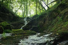 Banja Prolom (Vucko234) Tags: prolom banja spa nature forest woods outdoor waterfall river ngc