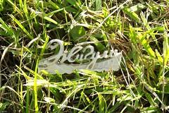 Жигули логотип / Zhiguli logo (Ebola Noses) Tags: жигули автоваз лада ссср россия авто автомобиль логотип avtovaz auto car lada logo russia ussr монохром monochrome wood green зелёный трава grass summer лето