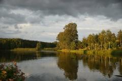 *** (pszcz9) Tags: polska poland staw pond odbicie reflection woda water drzewo tree pejzaż landscape przyroda nature natura naturaleza ponidzie beautifulearth sony a77