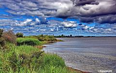 Am Wieker Bodden (garzer06) Tags: wolken deutschland grün meklenburgvorpommern dranske landschaftsbild wellen landschaftsfoto landscapephotography inselrügen hafen boote segelboote naturphotography blau weis baum naturfotografie landschaftsfotografie