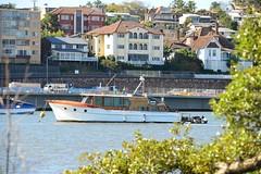 800_5549 (Lox Pix) Tags: queensland qld australia architecture catamaran crane river rivercat boat bird brisbane building brisbaneriver ship scenery yacht loxpix landscape loxworx loxwerx l0xpix