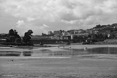 Low Tide (markjwyatt) Tags: santacristina acoruna spain lowtide bay boats bridge buildings hill clouds monochrome