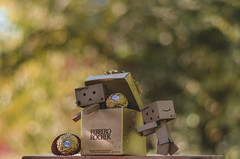 Hurry, you will see us!!! (RYS ~ Photography) Tags: photography photoshop photo photographer amor love d5100 danbo danboard ff foto fotografía fotógrafo f18 toy toys cámara camera cute corazón chocolate yummy delicious delicioso box bokeh bokehlicious kawaii nikon nikonista nikkor ferrero rocher