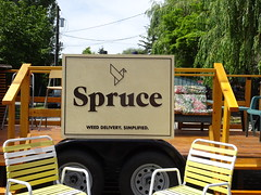 Spruce (knightbefore_99) Tags: day italian italy 2018 sol sun commercialdrive party eastvan vancouver car free weed delivery legal bc canada