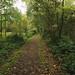 potteric carr path