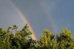 Regenbogen (tankredschmitt) Tags: ludwigshafen meteorologie natur regen regenbogen wolken