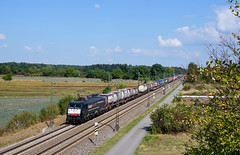 ES 64 F4 - 290(E 189-290) SBB Internaional (Daniel Powalka) Tags: wiese wolken werbelok eisenbahn railroads railways railway rail railroad rhein train trainspotting track trainspotter zug photo photographer photos photography photographie panorama portrait award artland spotting strecke schiene sonne deutschland d750 fotografie foto fotograf fotos flickr germany himmel loco lokomotiven lokführer lokomotive landschaft landscape landschaften verkehr badenwürttemberg bahn nikon nikkor nikond750 mrce dispolok sbb br189 güterverkehr güterzug outdoor natur